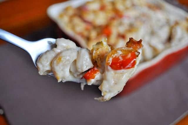 Pollo con pasta a los cuatro quesos