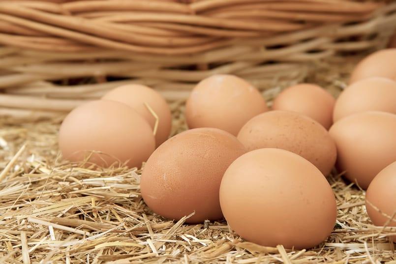 Alergia Al Huevo Cómo Puedo Sustituir El Huevo En Mis Recetas Recetín Recetín